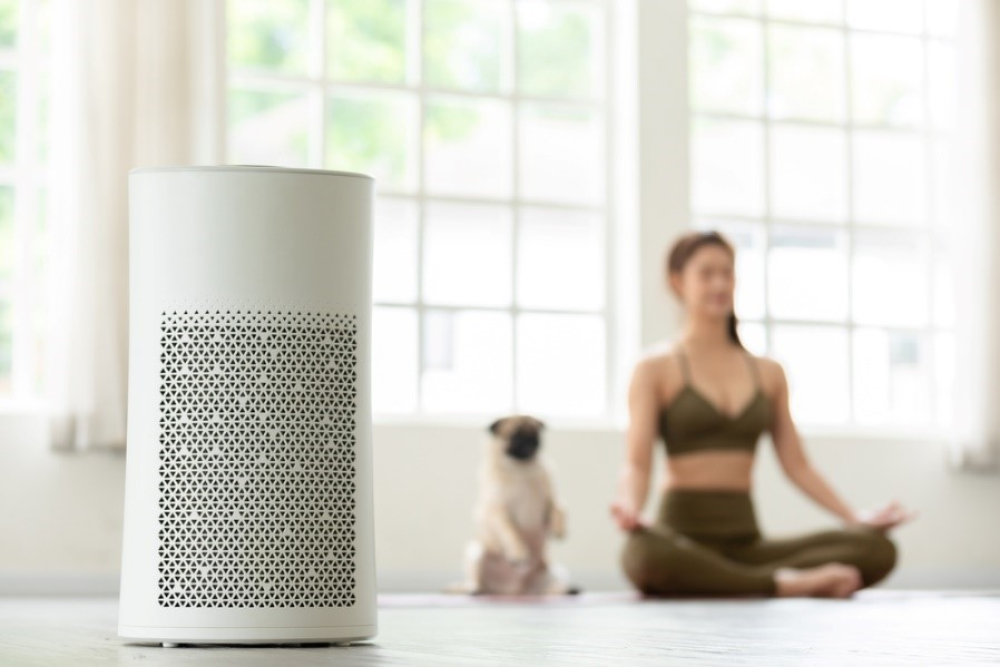 How to Tell if Air Purifier Is Working