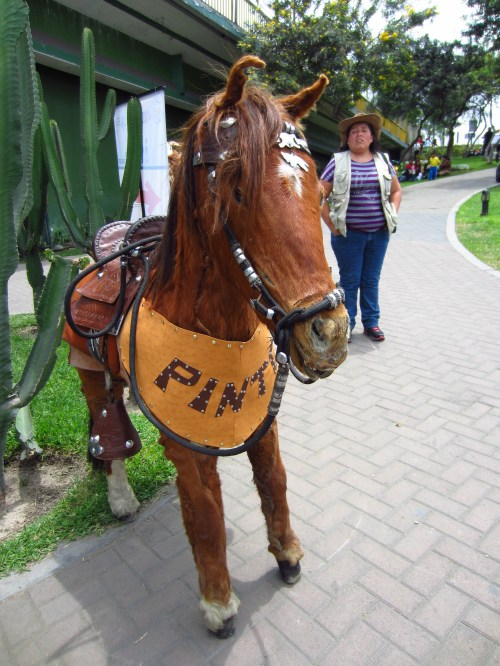 Creepy stuffed horse named Pinto.