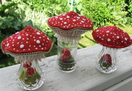 Mushroom Terrariums