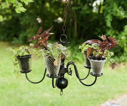 Chandelier Planter