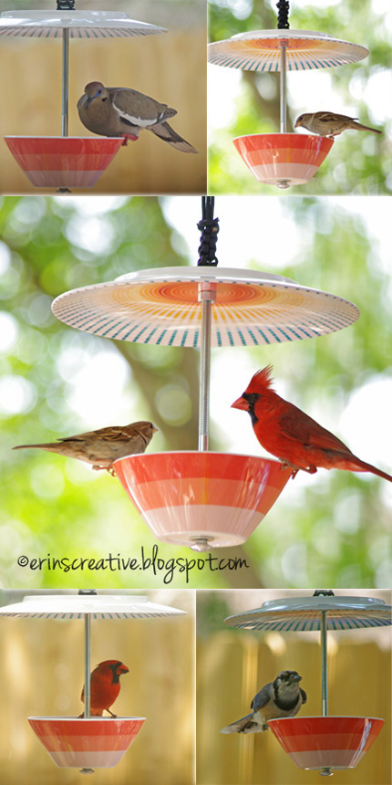 Bird Feeder from Dishes