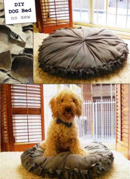 no-sew-dog-bed