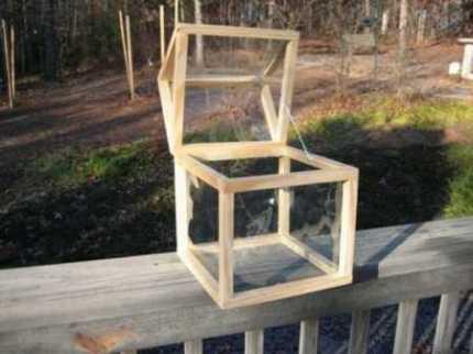 countertop_greenhouse