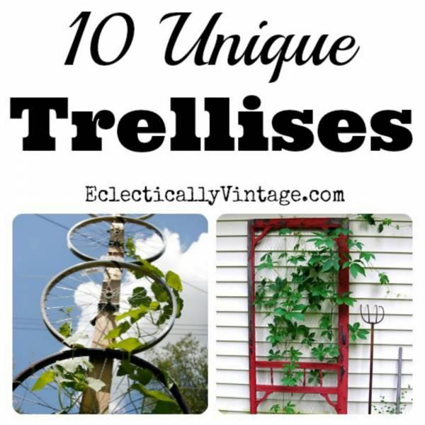trellis2