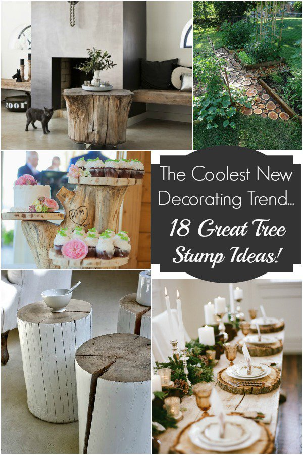 Decorating Your Home With Tree Stumps Home And Garden