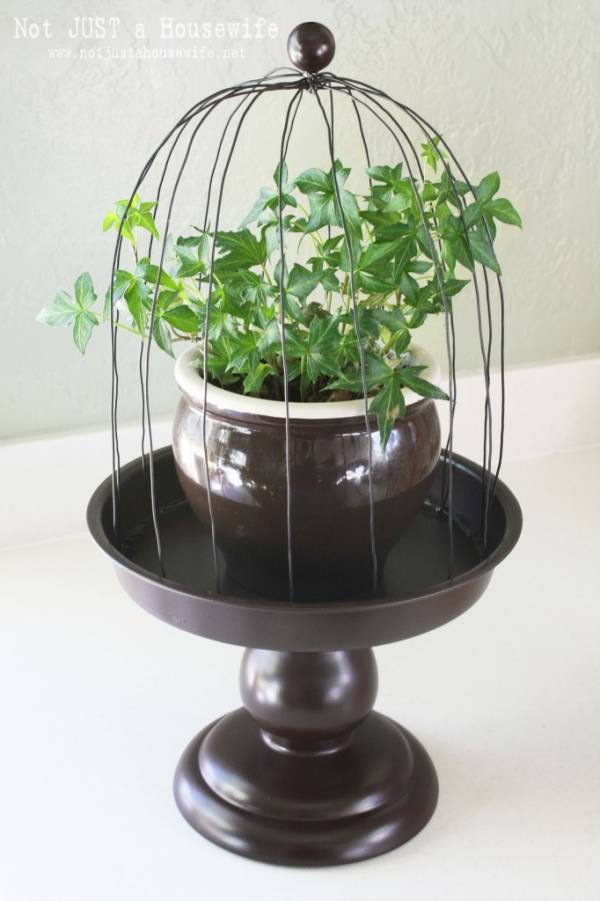 Wire Plant Cloche Tutorial Home And Garden