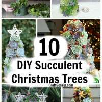 10 Succulent Christmas Trees You Can Make At Home