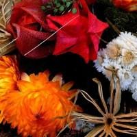 Sušené květiny jsou pěknou dekorací přinášející radost