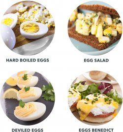 Top 3 Best Electric Egg Cooker Canada 2020