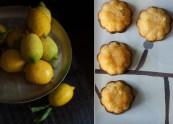 citrusok