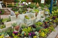 Outdoor Succulent Garden Creative Indoor And Outdoor