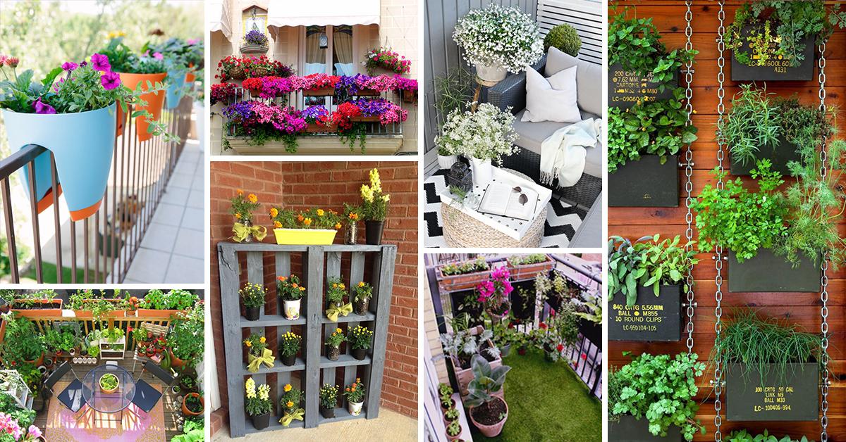 50 best balcony garden ideas and