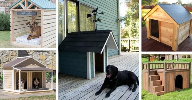best outdoor dog house design ideas featured homebnc