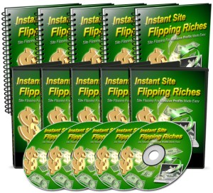 Website Flipping Riches Cover