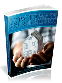 Selling Homes Business Cover