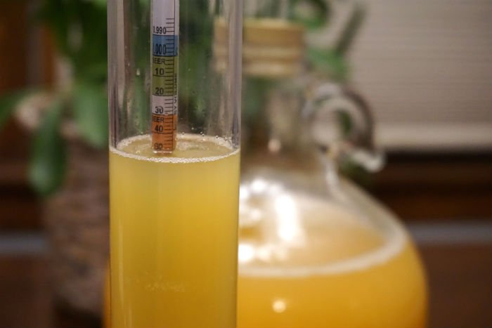 a hydrometer in pineapple apple must reading 1.050 with a glass fermenter in the background