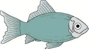 generic_fish