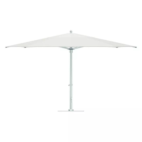classic white umbrella