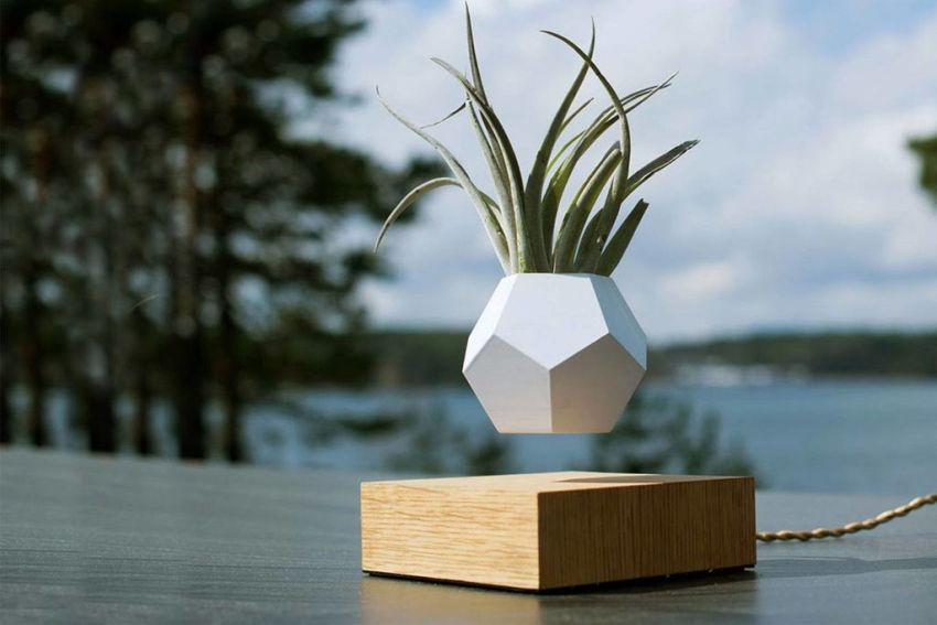 DIY Levitating Planter You'll Want On Your Coffee Table