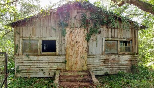 HomeDabbler Kevin Elliott Point Washington Cottage