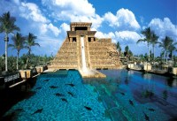 The World Best Backyard Pools in Your Home