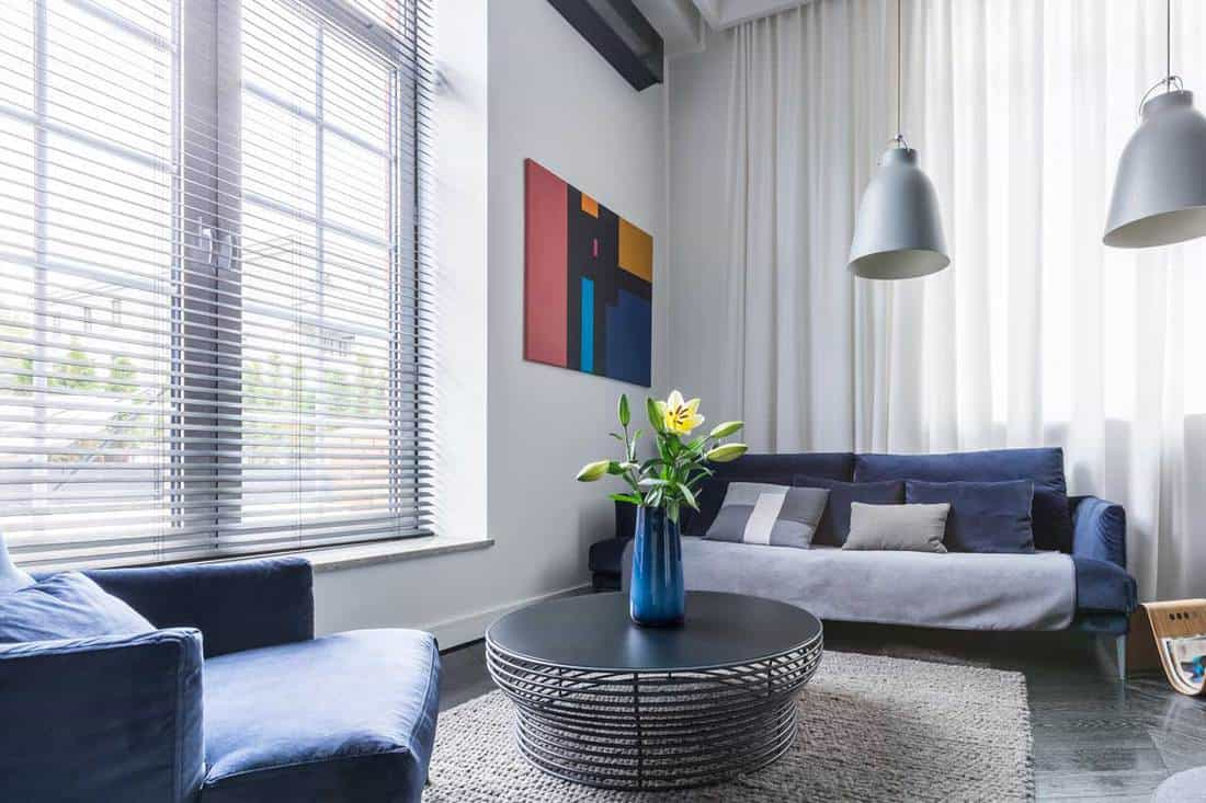 Blinds Or Curtains For Living Room Let Us Help You Decide Home Decor Bliss