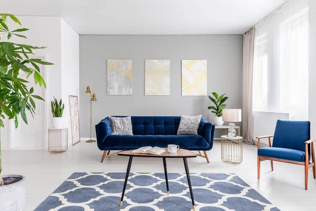 What Color Carpet Goes With Gray Walls 5 Suggestions With Pictures Home Decor Bliss