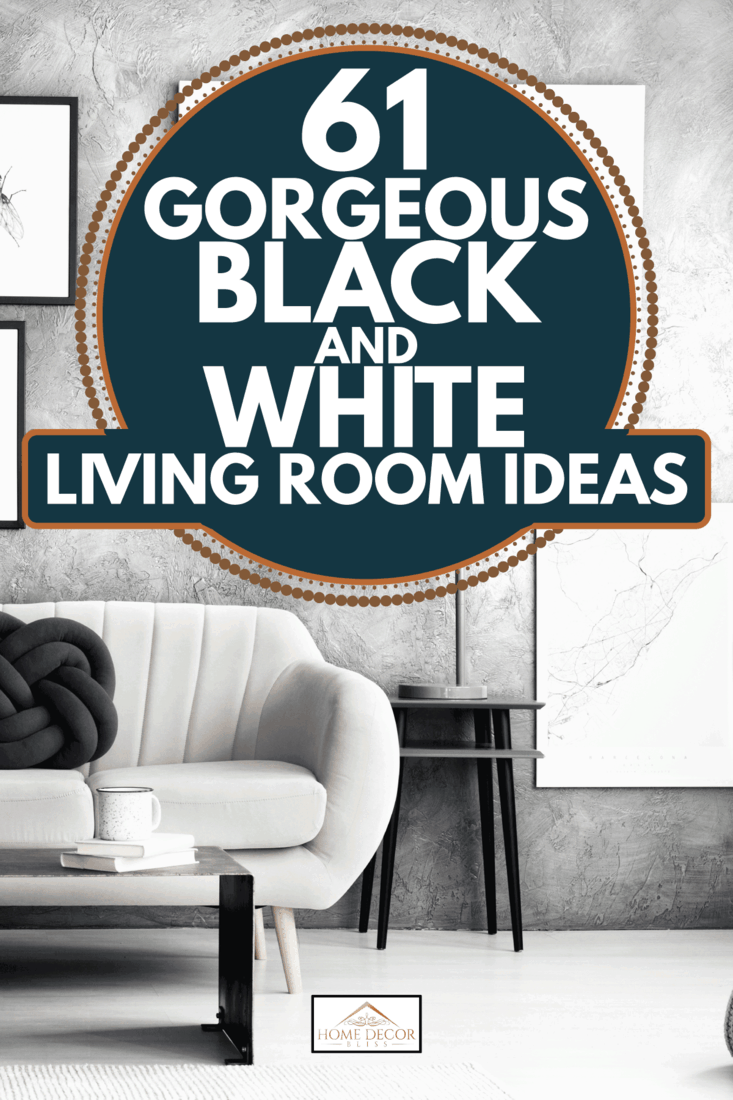 61 Gorgeous Black And White Living Room Ideas Home Decor Bliss