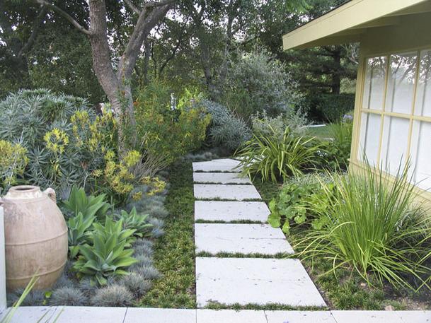 Drought tolerant green gardens - Drought tolerant backyard landscaping ideas ...