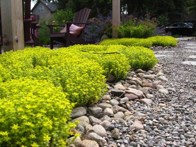 Drought tolerant green gardens - Drought tolerant plants landscape design ...