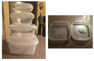Product Review – Ozeri's Food Storage Containers