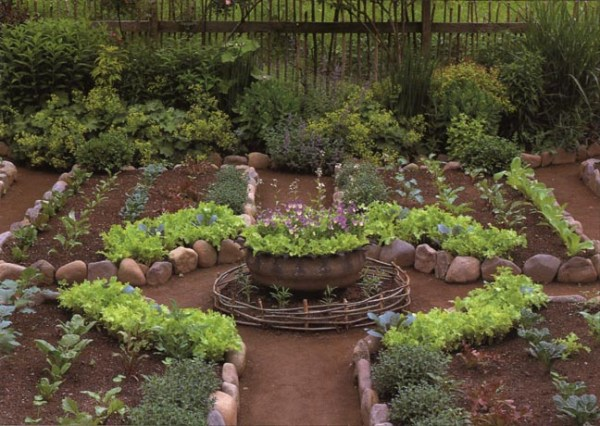 Unique vegetable gardens home decor designs for Unique vegetable garden ideas