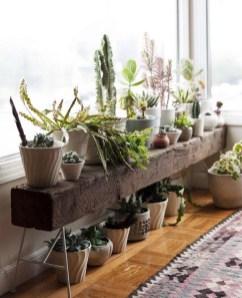 Inspiring Indoor Plans Garden Ideas To Makes Your Home More Cozier 14