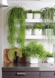 Inspiring Indoor Plans Garden Ideas To Makes Your Home More Cozier 24
