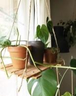 Inspiring Indoor Plans Garden Ideas To Makes Your Home More Cozier 29