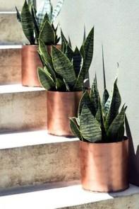 Inspiring Indoor Plans Garden Ideas To Makes Your Home More Cozier 41