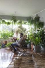Inspiring Indoor Plans Garden Ideas To Makes Your Home More Cozier 42
