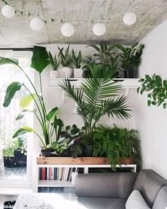 Inspiring Indoor Plans Garden Ideas To Makes Your Home More Cozier 56