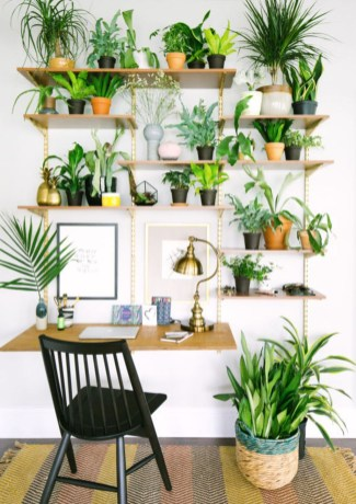 Inspiring Indoor Plans Garden Ideas To Makes Your Home More Cozier 64
