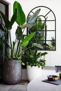 Inspiring Indoor Plans Garden Ideas To Makes Your Home More Cozier 70
