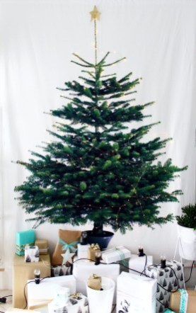 Inspiring Home Decoration Ideas With Small Christmas Tree 24