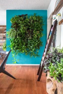 Cool Indoor Vertical Garden Design Ideas 20