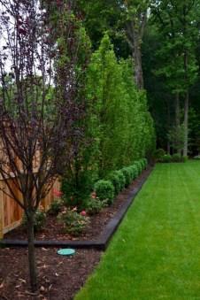 Cozy Backyard Landscaping Ideas On A Budget 08