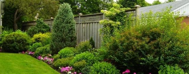 Cozy Backyard Landscaping Ideas On A Budget 42