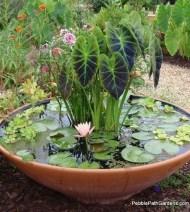 Incredible Small Backyard Garden Ideas 19