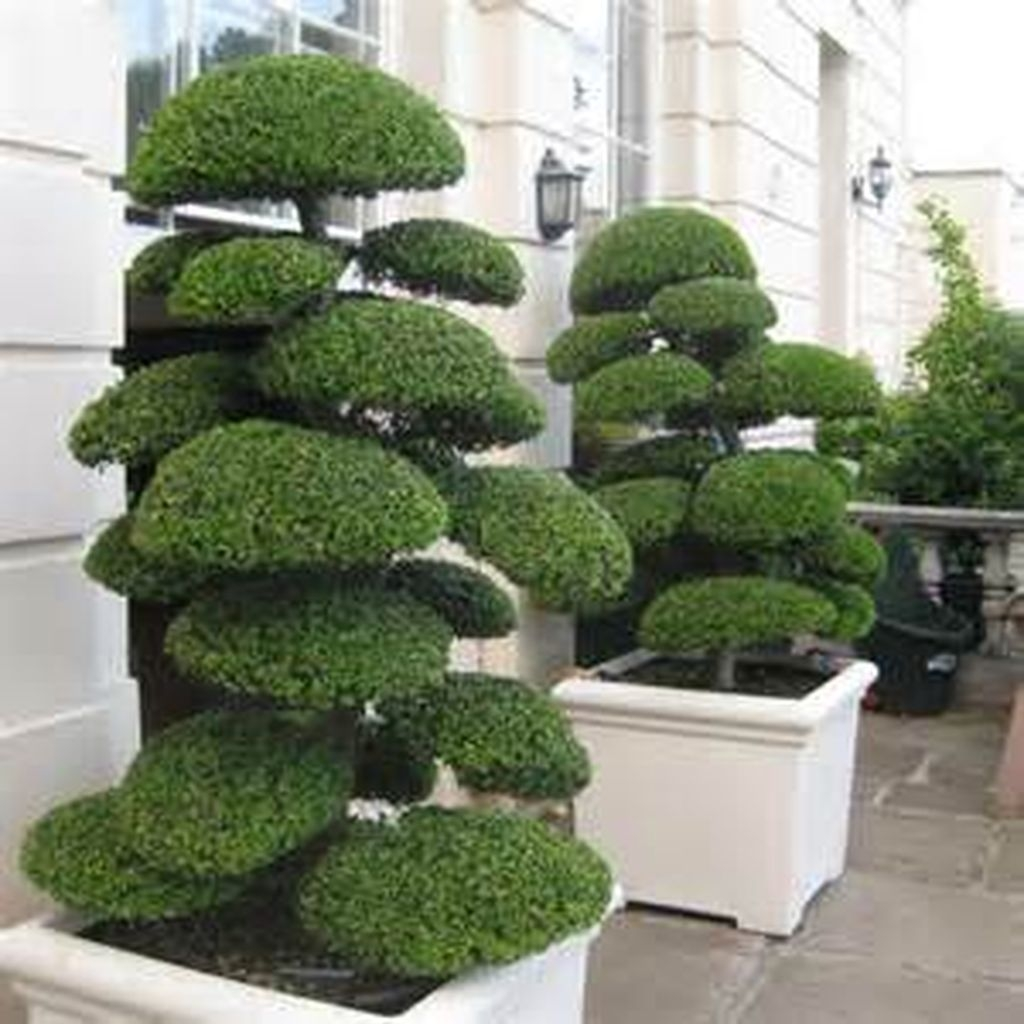 Relaxing Japanese Inspired Front Yard Decoration Ideas 24
