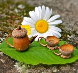 Totally Cool Magical Diy Fairy Garden Ideas 32