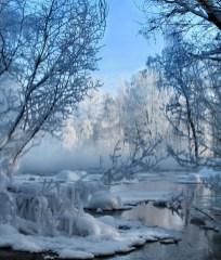 Cozy Winter Wonderland Decoration Ideas 20
