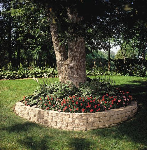 10 Best Retaining Wall Around Trees Images On Pinterest