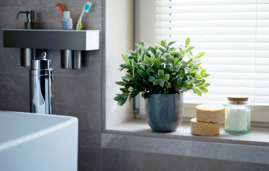 10 Tips To Green Clean Your Bathroom Realestateau